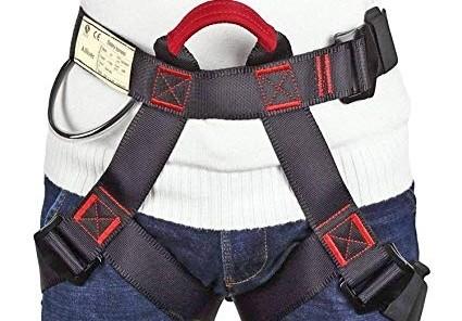 arnes-de-cintura