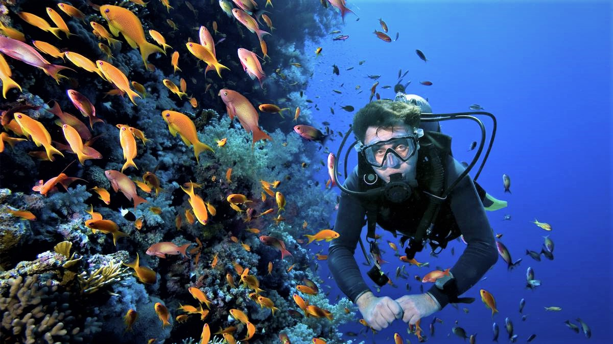 tipos-trajes-buceo